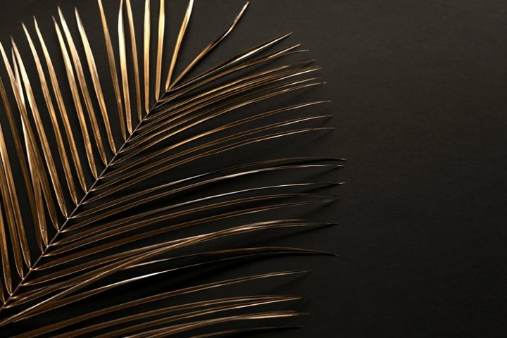 Closeup of golden palm leaves on black background. Flat lay.