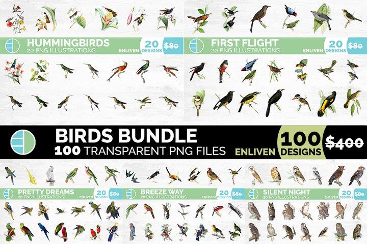 Birds Bundle Set Vintage Graphics