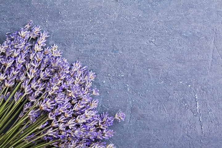 Top view lavender flowers photo with copy space