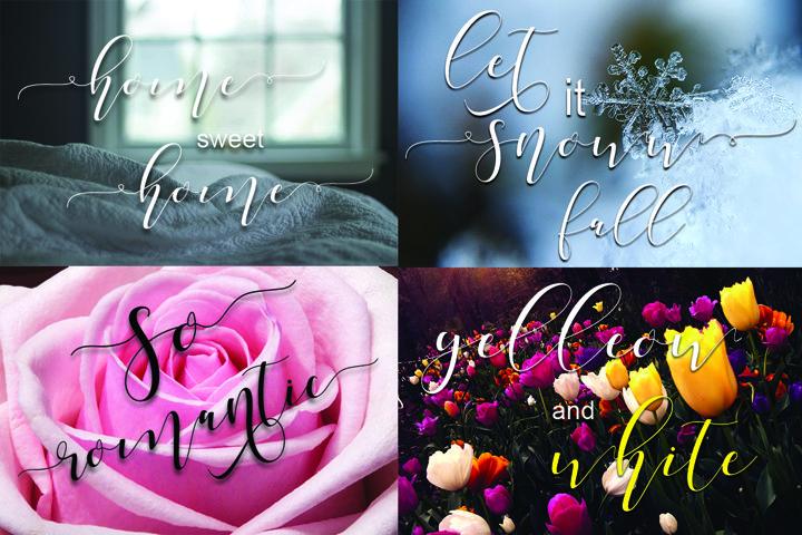 Shania Sweet Calligraphy Modern - Free Font of The Week Design0