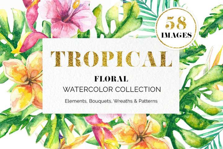 Tropical Floral Watercolor Collection