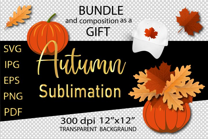 Fall leaves, Pumpkin SVG. Autumn bundle. Sublimation
