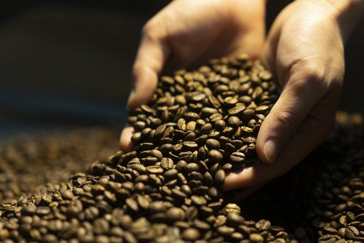 Roasted african Arabica Coffee bean with Roast machine