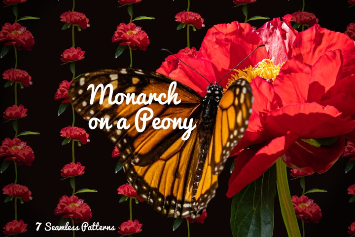 Peony and Monarch patterns