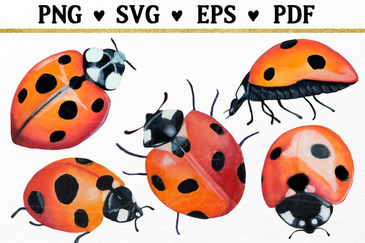 Ladybug Watercolor Clipart SVG