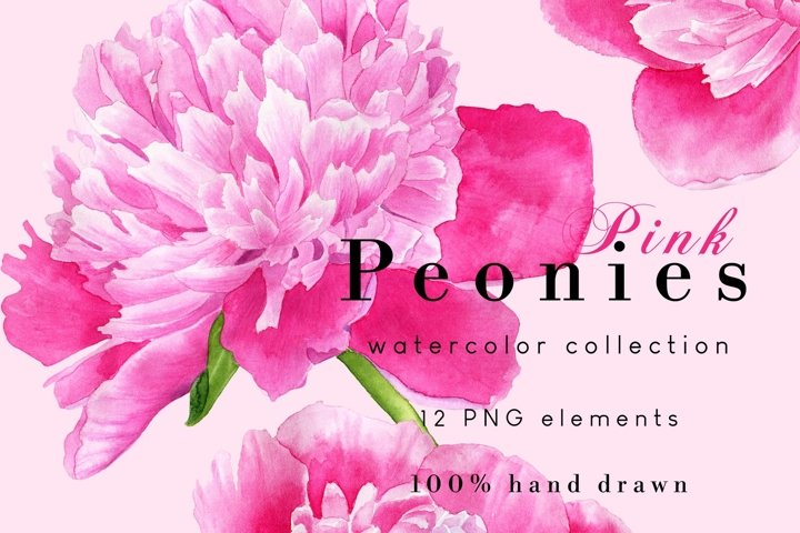 Watercolor Peony Clipart Set