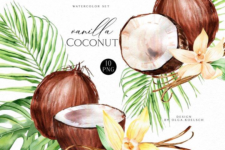 Coconut watercolor clipart, Vanilla watercolor bouquet png