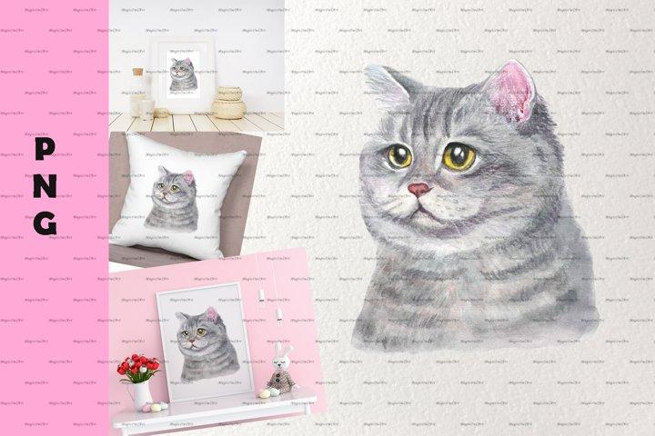 cat face cat watercolor cat sublimation cat art