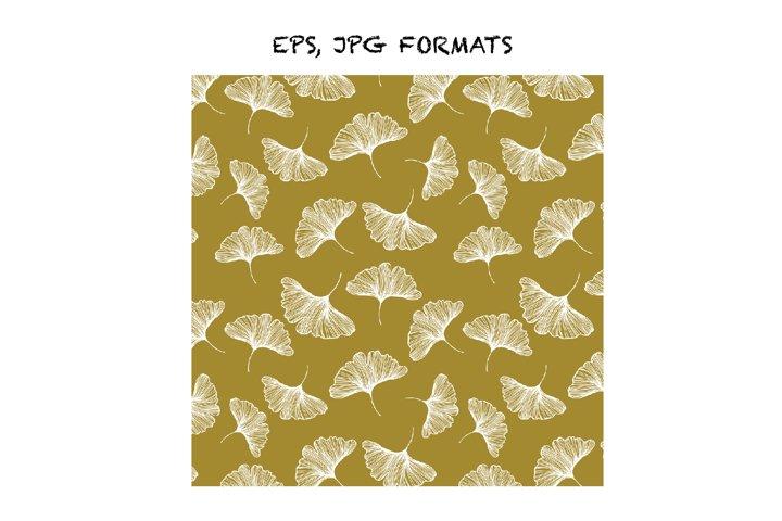 Ginkgo biloba leafs pattern