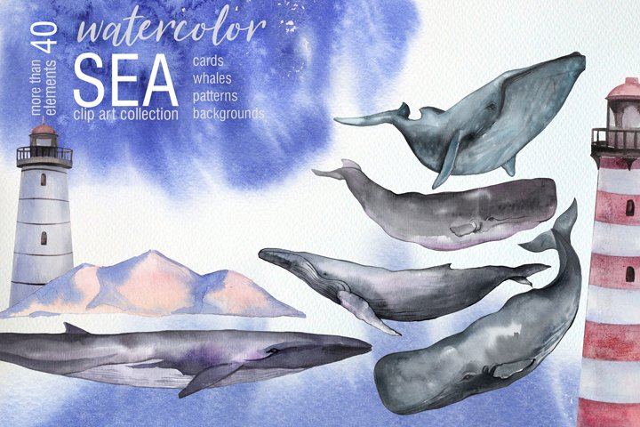 Watercolor Sea. Whales clip art
