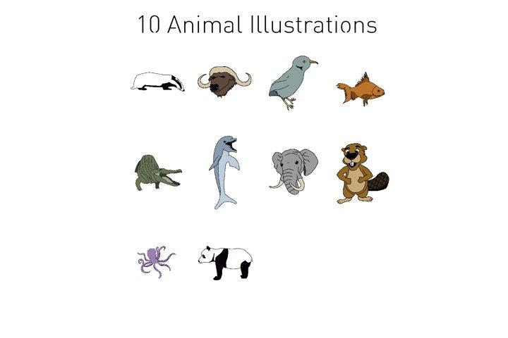 10 Animal Illustrations