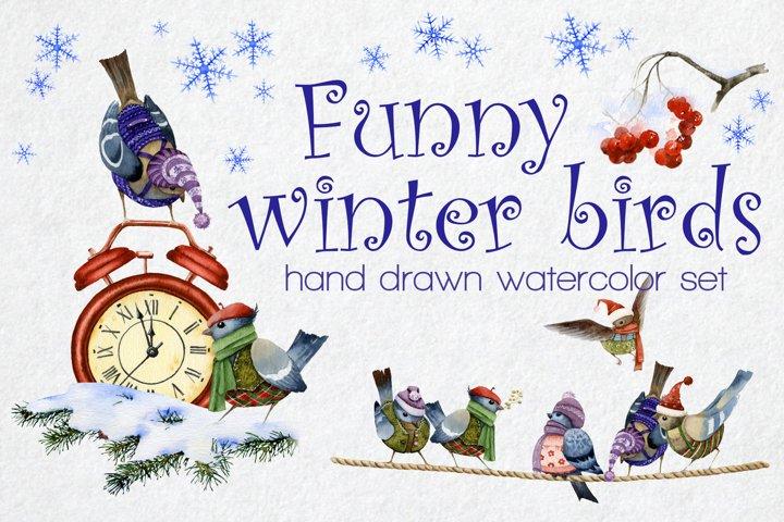 Funny cartoon winter birds watercolor set