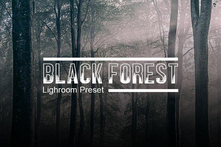 NamastePhotography Black Forest Lightroom Preset Desktop