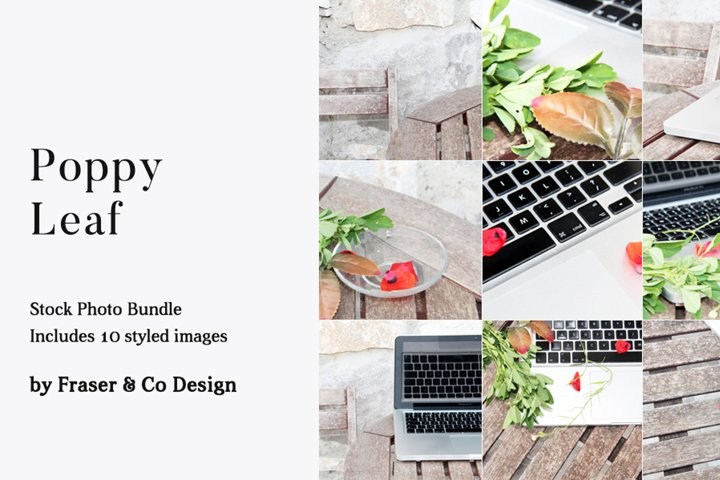 Poppy Leaf - Stock Photo Bundle