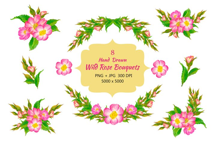 Vintage Hand Drawn Wild Pink Rose Flowers
