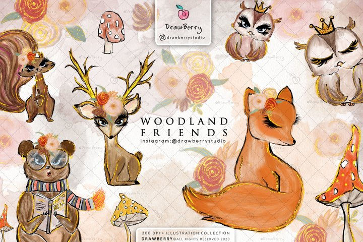 Woodland Forest Animals illustration Clipart Pack