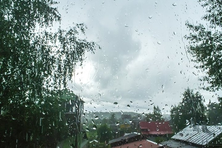 raindrops on the window. roofs of houses and tree foliage