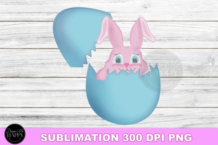 Easter Bunny Sublimation, Easter Bunny Clipart, Easter PNG