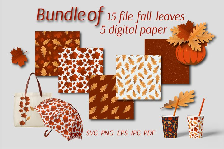 Fall leaves SVG. Bundle. Autumn Digital paper