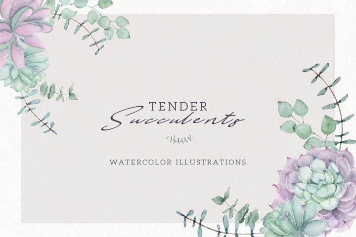Watercolor Set Tender Succulents