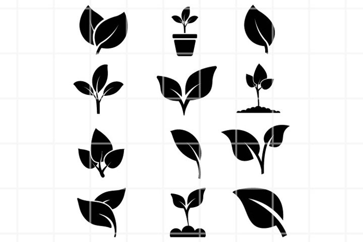 leaves or nature SVG set for cut. Flora illustration.