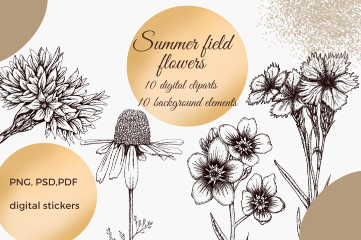 summer flowers png design elements, graphic flowers