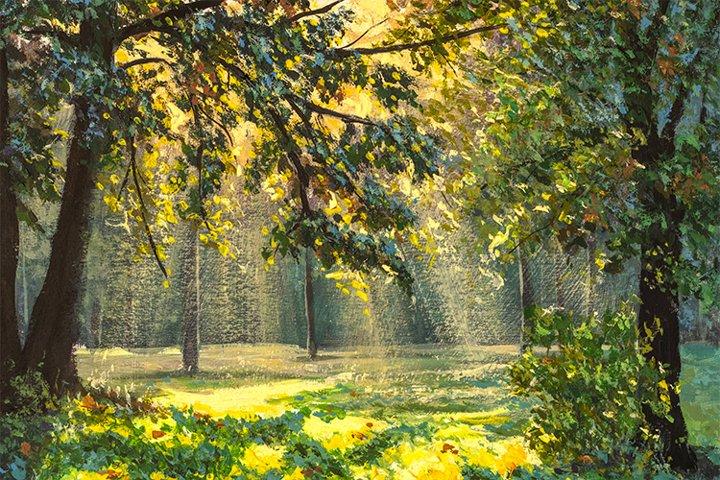Magic light in natural park modern fine art