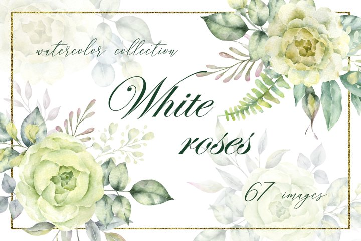 White roses collection.