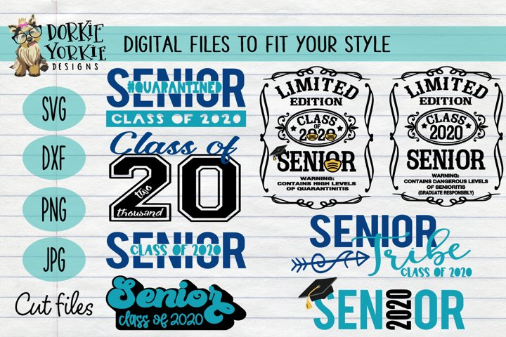 UPDATED BUNDLE Senior CLASS of 2020 - grad, graduation