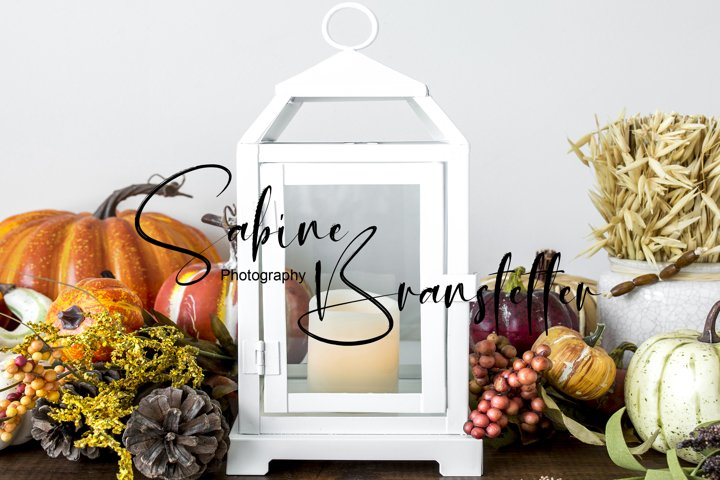 Styled Stock Photo Lantern Halloween/Thanksg./Fall Mockup