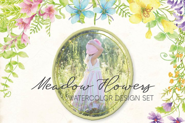 Meadow flowers - watercolor collection