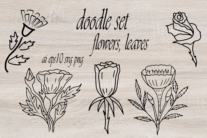 Doodle floral elements. Sketch of flowers and leaves.