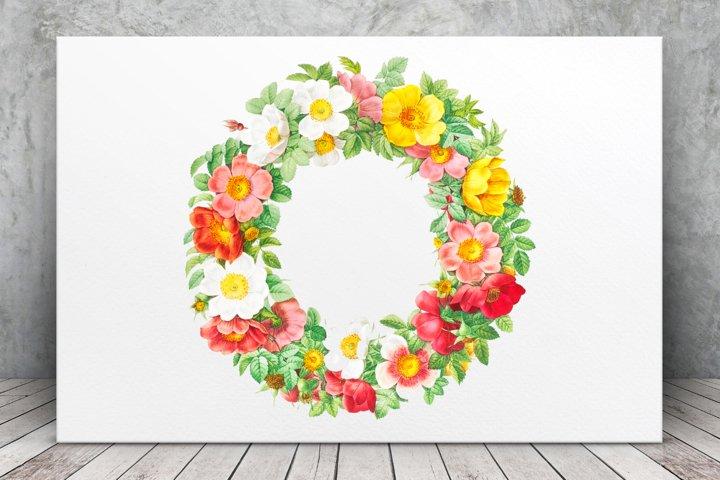 Watercolor Wreaths, Red Vintage Flowers, Botanical IlIustrat
