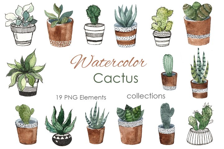 Watercolor Clipart. Cactus Clipart. Tropical dessert