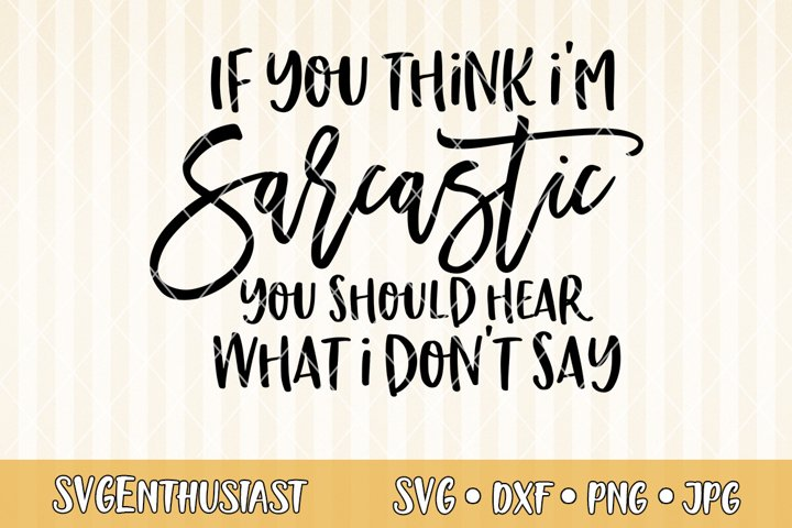 If you think im sarcastic you should hear what i dont say