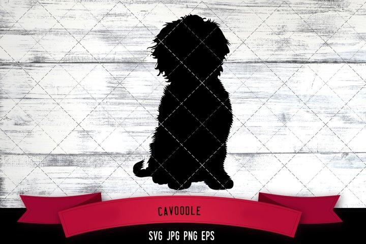 Cavoodle Cut file Svg