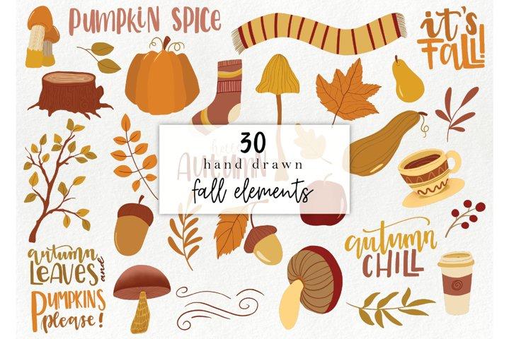 Hand drawn fall elements - autumn clipart, woodland elements