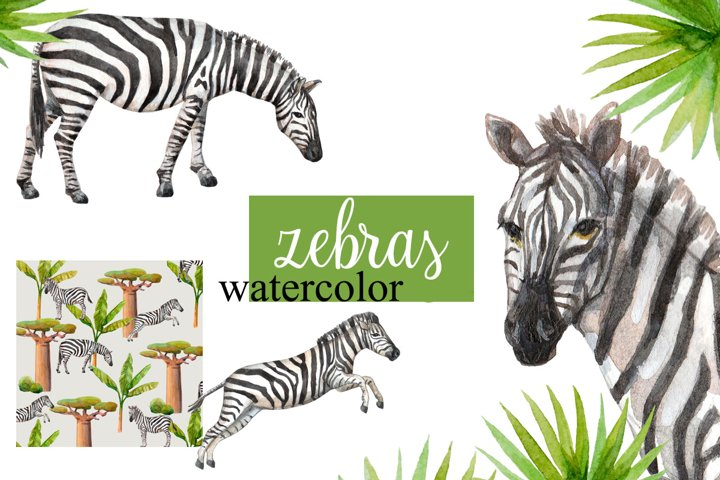Watercolor zebras and plants.