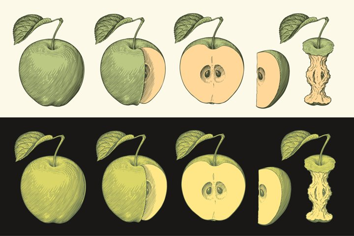 Apples. Hand drawn illustration. Vector engraving.