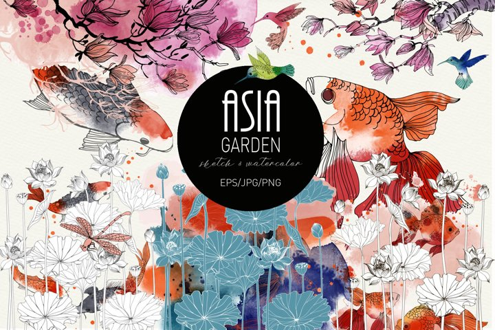 Asia Garden. Ink and watercolor