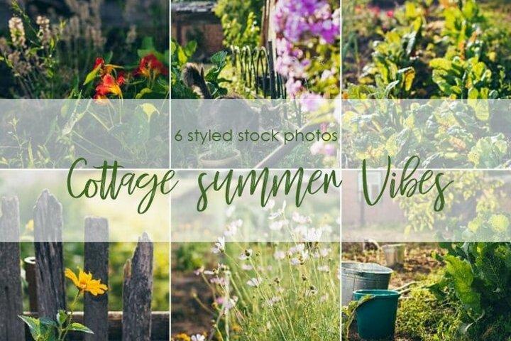 Cottage summer vibes bundle