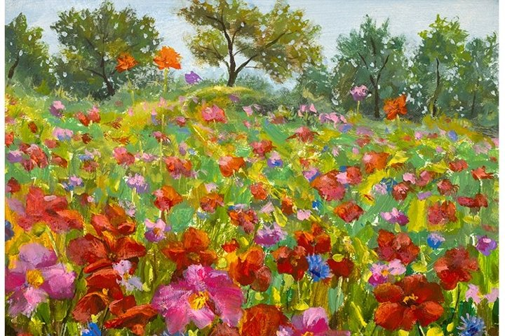 Big red red poppies field, pink wildflowers in green grass