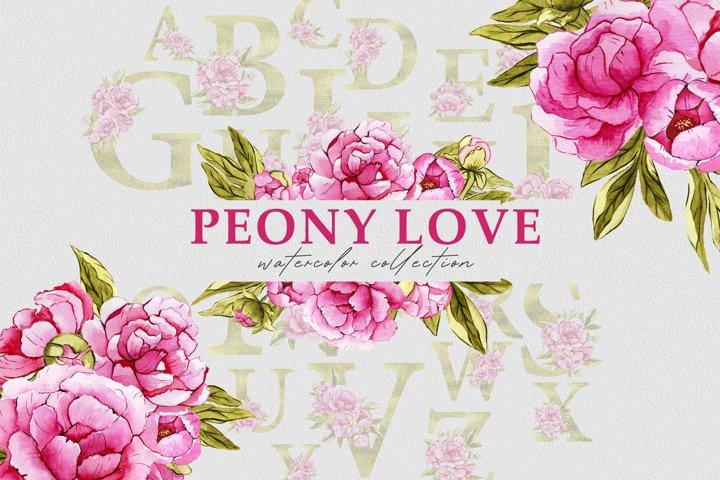 Watercolor floral set pink ponies PNG