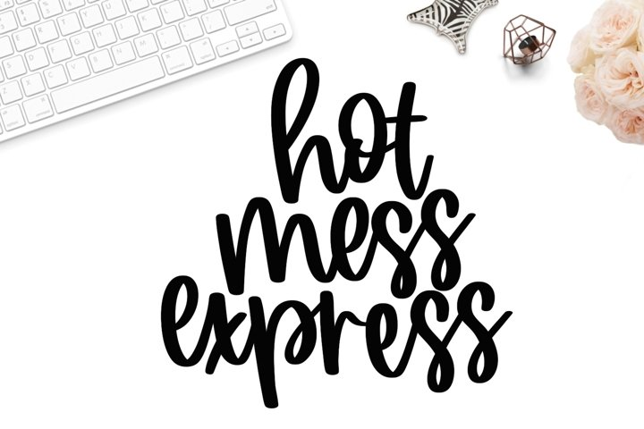 Hot mess express svg, hot mess svg, funny mom svg, mom svg