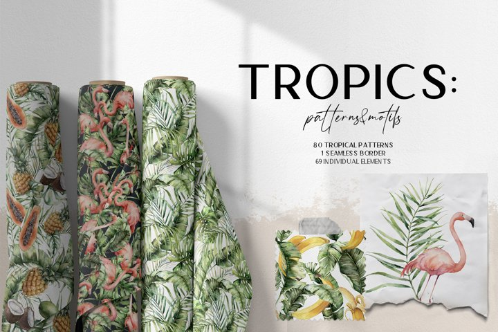 Tropics. Tropical leaves patterns and motifs. Tropical birds