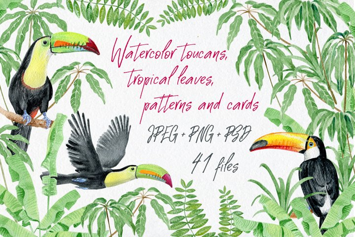Watercolor toucans, patterns and cards