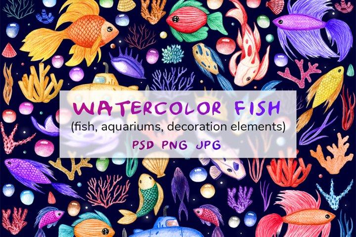 Watercolor fish, and ocean elements