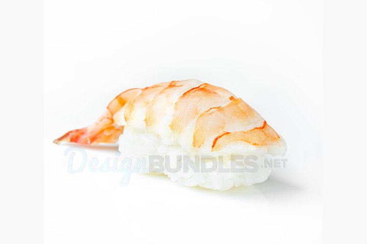 Close-up Sushi nigiri with shrimp on isolated background