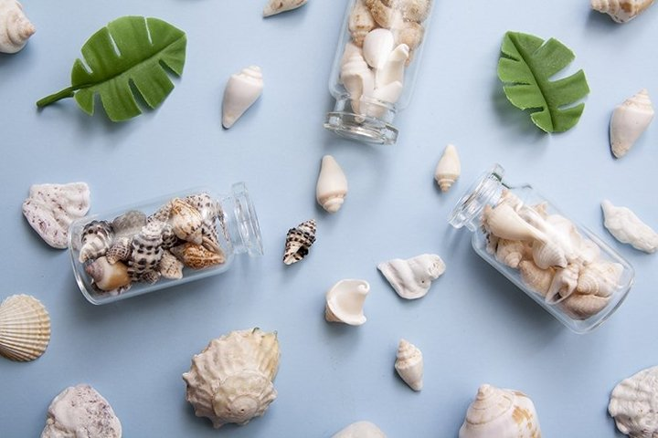 Flat lay shells in bottles Travel, vacation concept