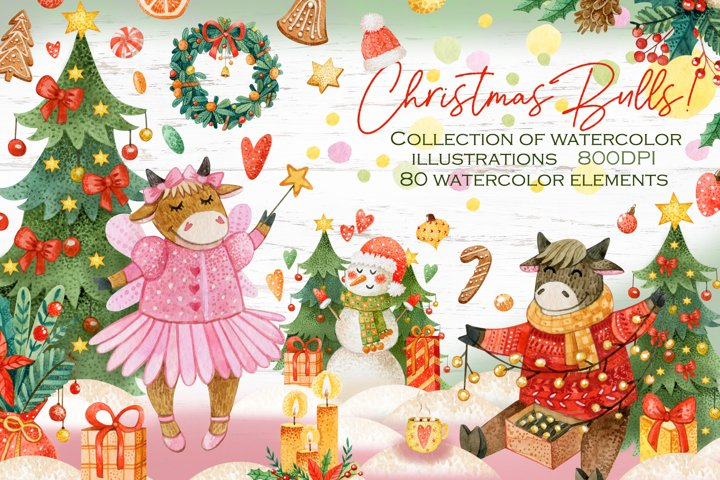 Hand-draw watercolor Christmas Bulls collection.Illustration